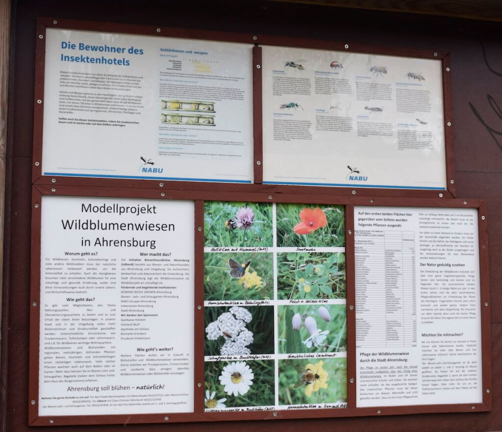 Modellprojekt Wildblumenwiesen in Ahrensburg