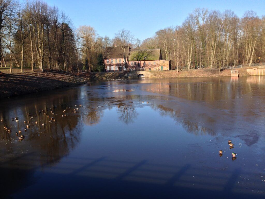 Enten auf dem gefrorenen Ahrensburger Schlossteich – Foto: Mia