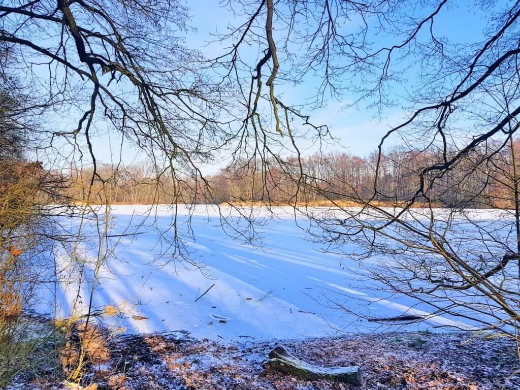Ahrensburg, Der Bredenbeker Teich im Winter – Foto: Nicole Stroschein