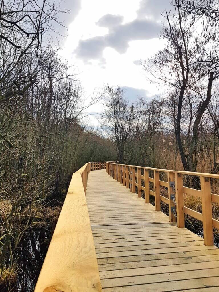 Die Brücke am Moorwanderweg Ahrensburg –Foto: Nicole Stroschein