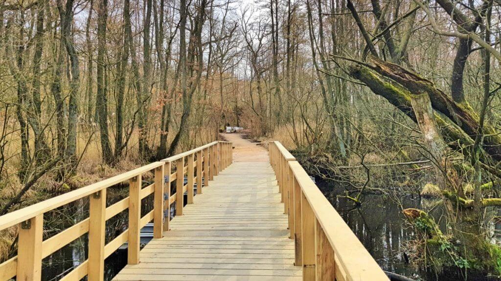 Moorwanderweg Ahrensburg, die Brücke am Forst Hagen – Foto: Nicole Stroschein