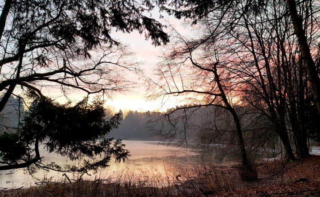 Sonnenaufgang im Park Manhagen – Foto: Nicole Stroschein