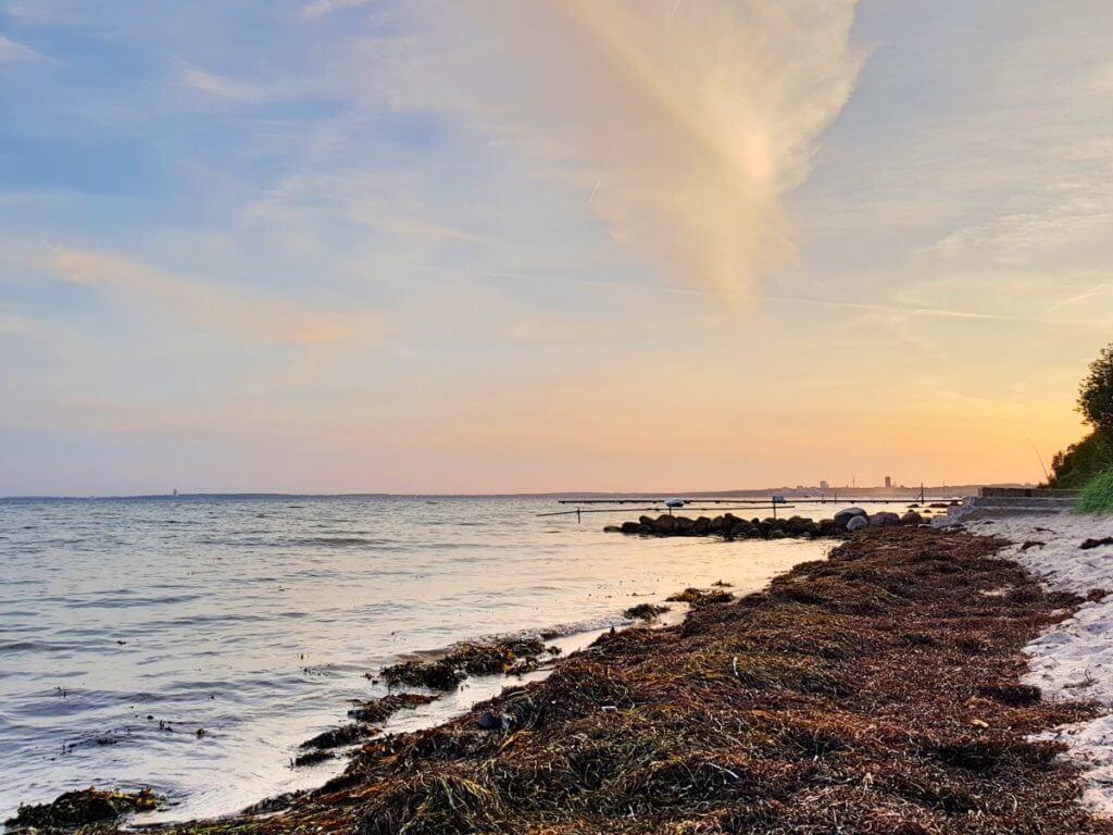 Ratz fatz an die Ostsee – Foto: Nicole Stroschein