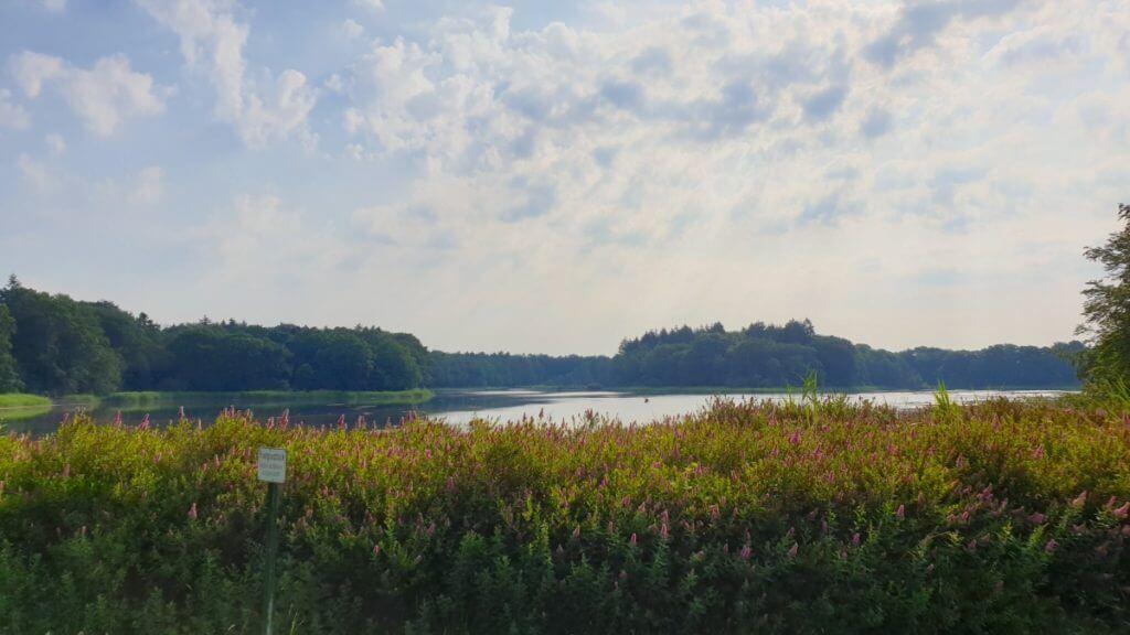 Wunderschön: Der Blick über den See – Foto: Nicole Stroschein