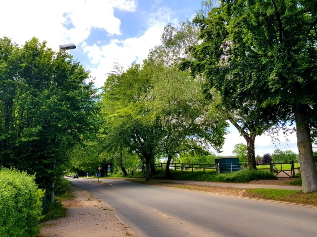 Die Dorfstraße in Ahrensfelde – Foto: Nicole Stroschein