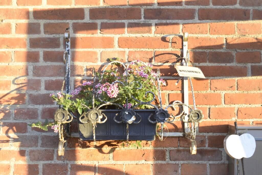 Blumen am Eingang der Gutshofscheune – Foto: Nicole Stroschein