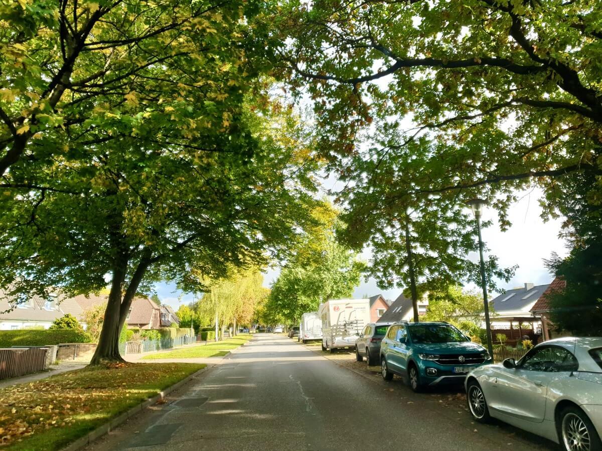 Brauner Hirsch, Ahrensburg –Foto: Nicole Schmidt
