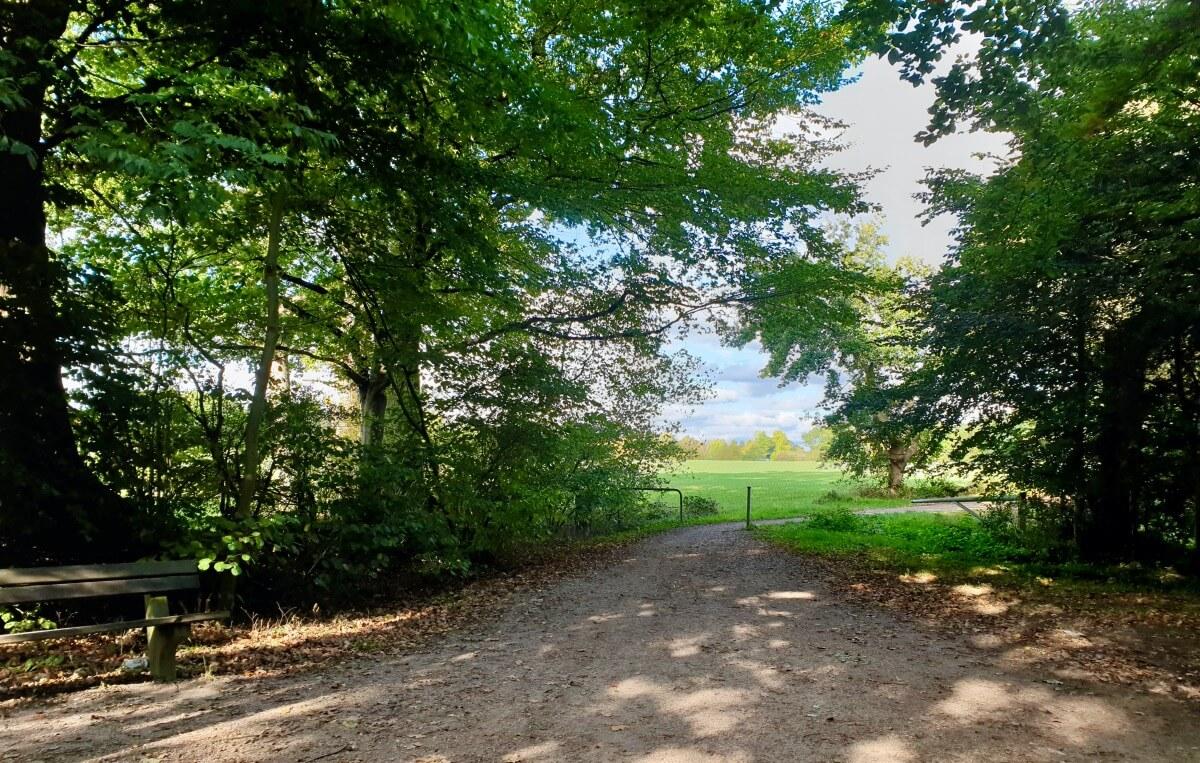 Blick ins Grüne, Gartenholz, Ahrensburg