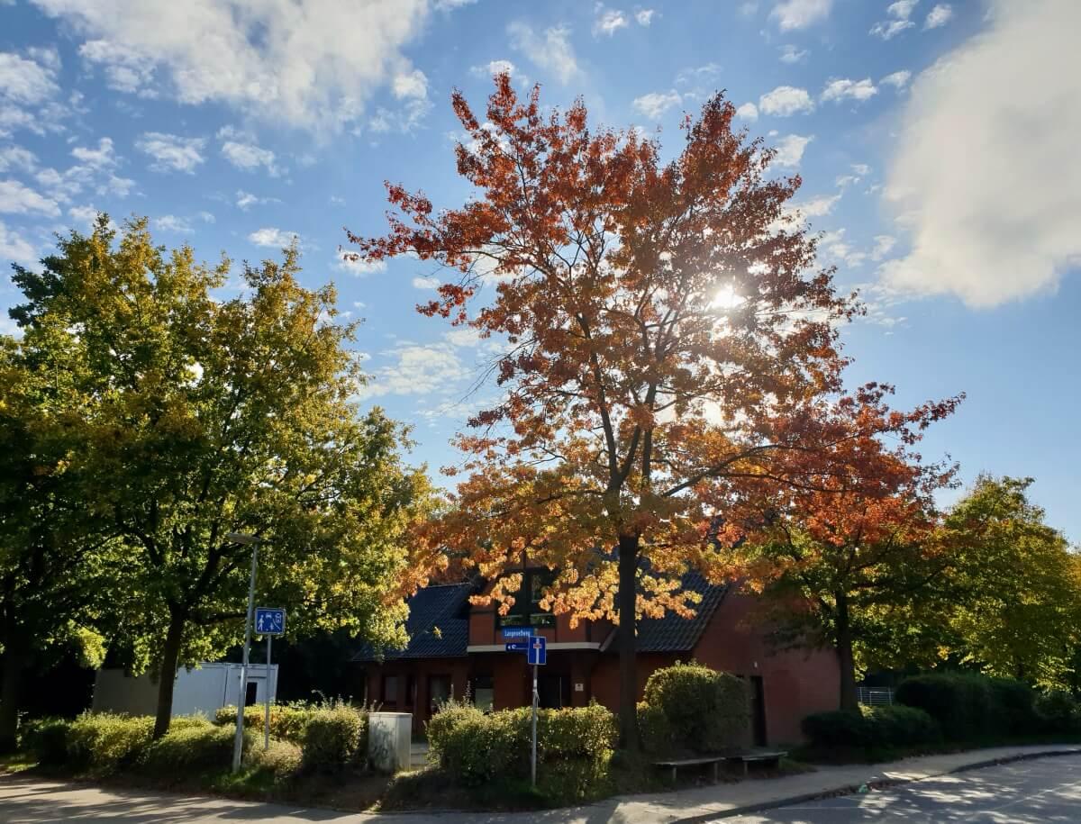 Das Gemeinschaftshaus im Gartenholz – Foto: Nicole Schmidt