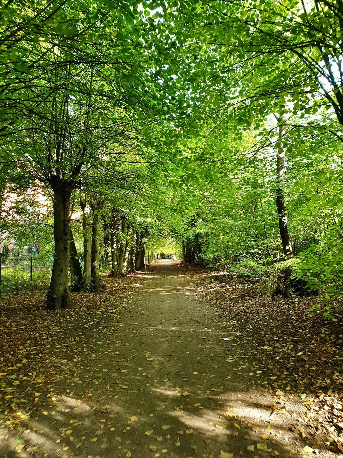 Spazierweg, Amrumstieg / Syltring Gartenholz, Ahrensburg – Foto: Nicole Schmidt