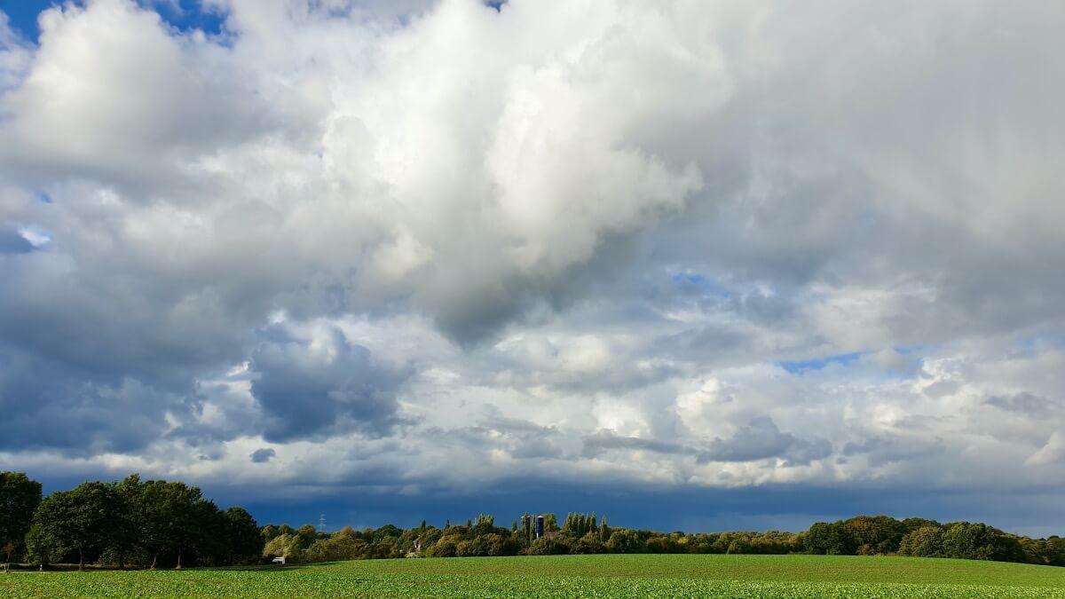 Weitblick am Fliegerweg, Hagen, Ahrensburg – Foto: Nicole Schmidt