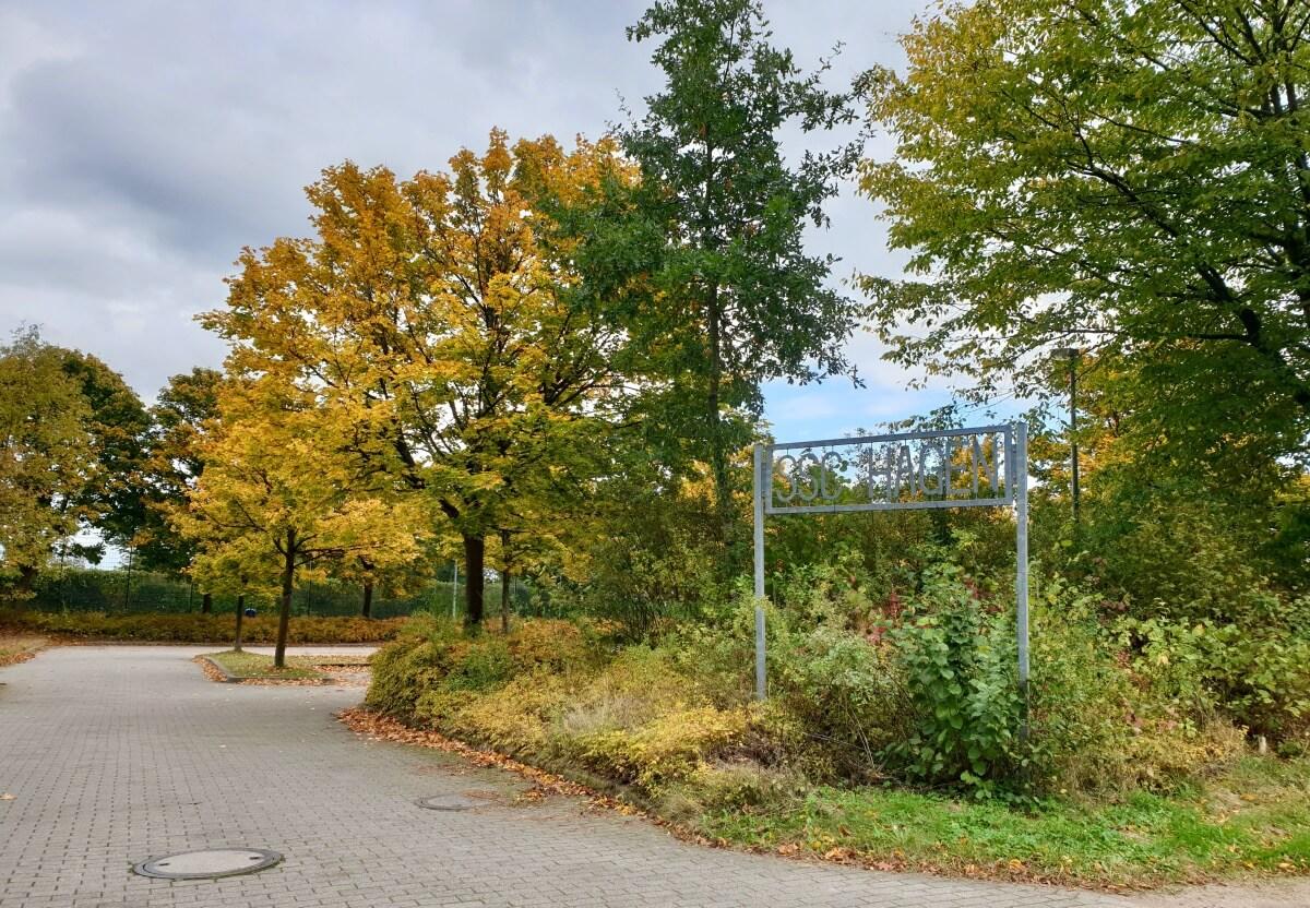 SSC Hagen Ahrensburg – Foto: Nicole Schmidt