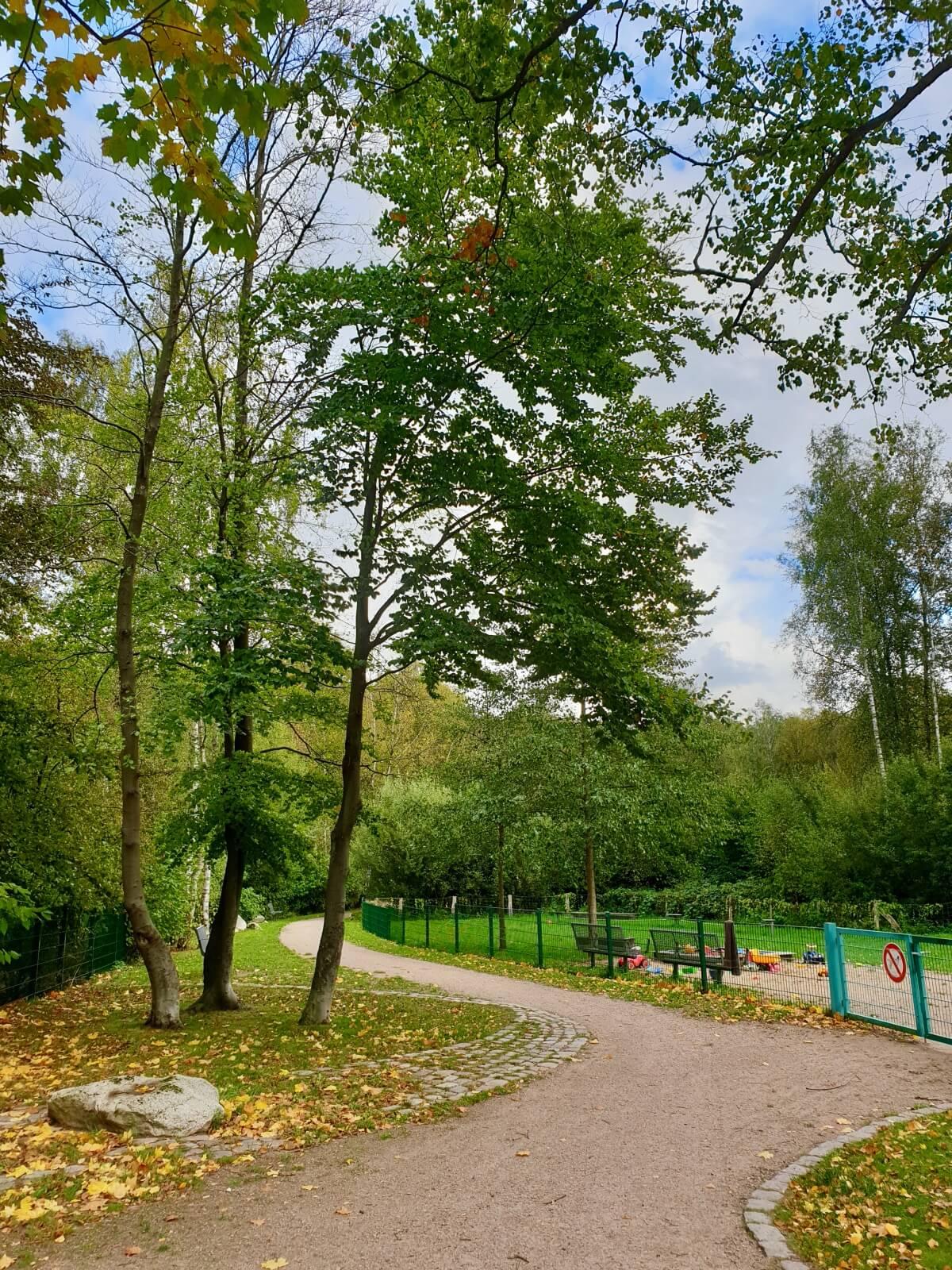 Spazierweg im Hagen am Pionierweg –Foto: Nicole Schmidt