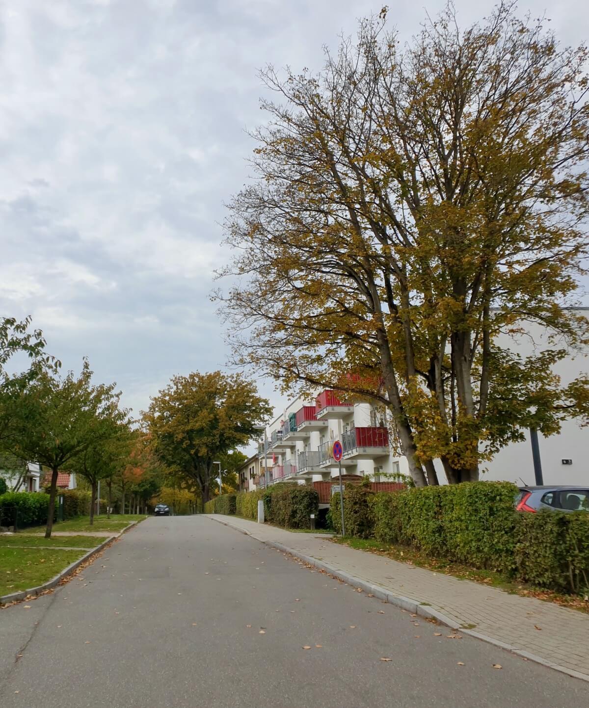 Fannyhöh in Ahrensburg –Foto: Nicole Schmidt