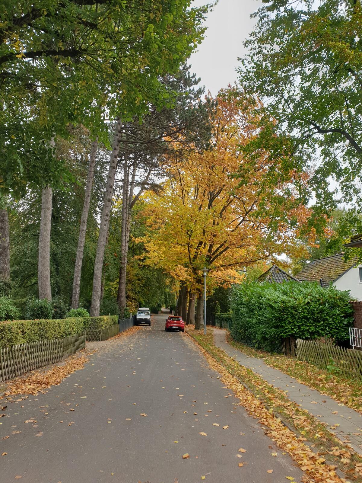 Gronepark in Ahrensburg –Foto: Nicole Schmidt