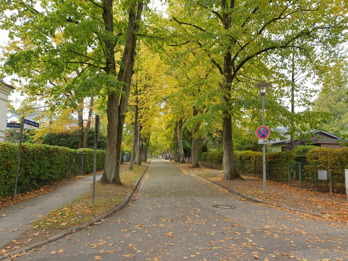 Kaiser-Wilhelm-Allee in Ahrensburg –Foto: Nicole Schmidt