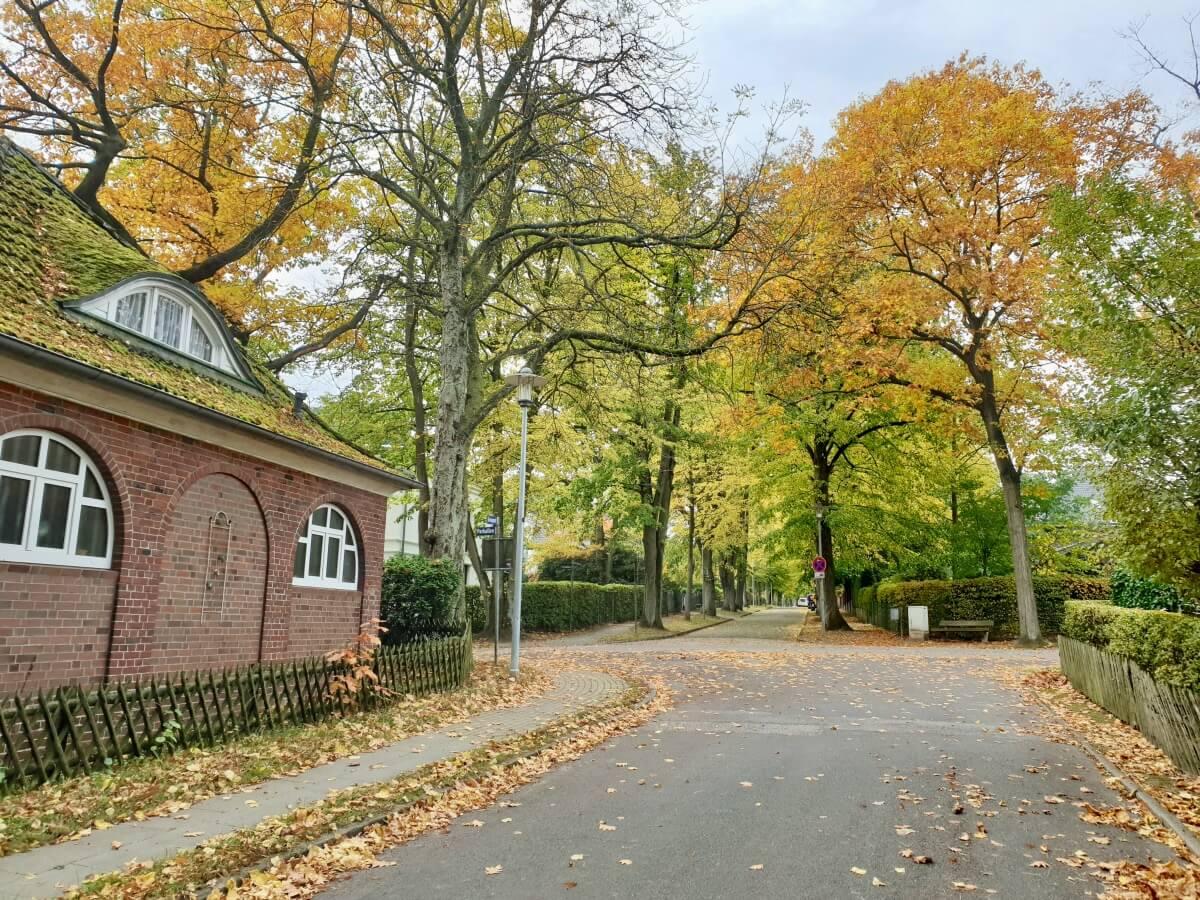 Die Parkaue in Ahrensburg –Foto: Nicole Schmidt