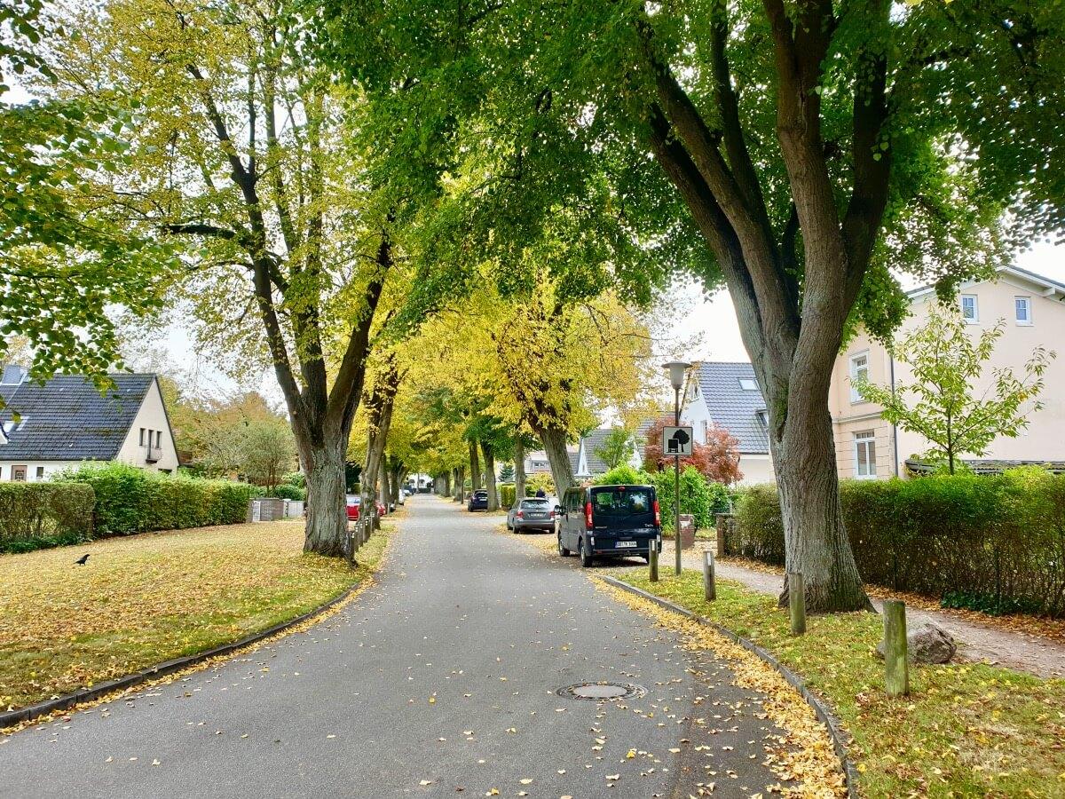 Die Schillerallee in Ahrensburg – Foto: Nicole Schmidt