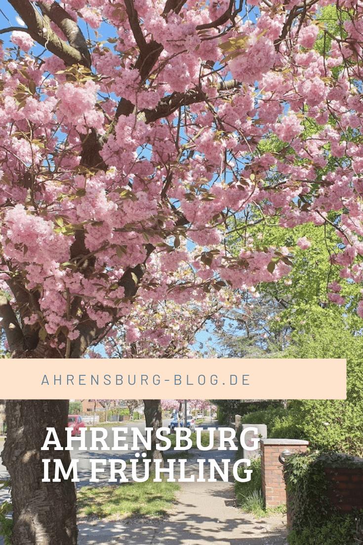 Ahrensburg im Frühling für Pinterest –Foto: Nicole Stroschein