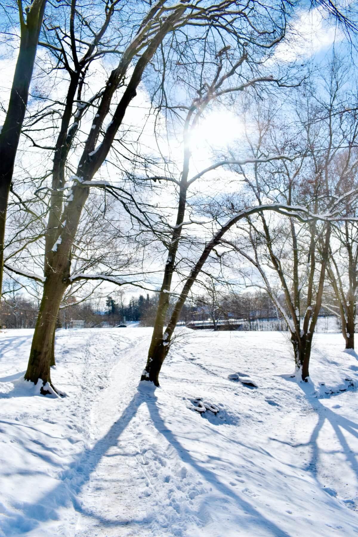 Schlosspark Ahrensburg im Schnee – Foto: Nicole Schmidt