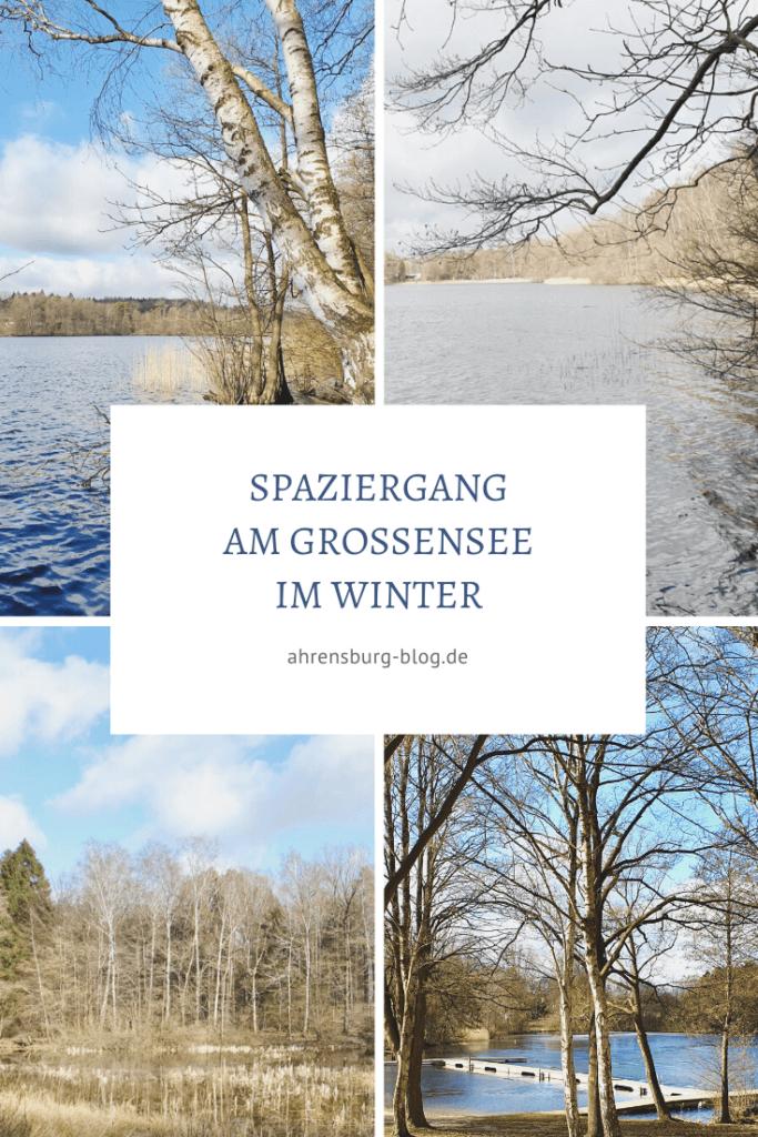 Der Großensee im Winter