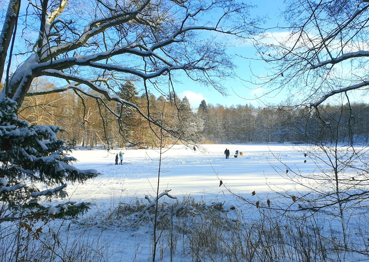 Der Park Manhagen im Winter