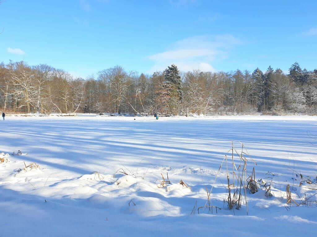 Wunderschöne Winterlandschaft: Der Park Manhagen in Großhansdorf – Foto: Nicole Schmidt