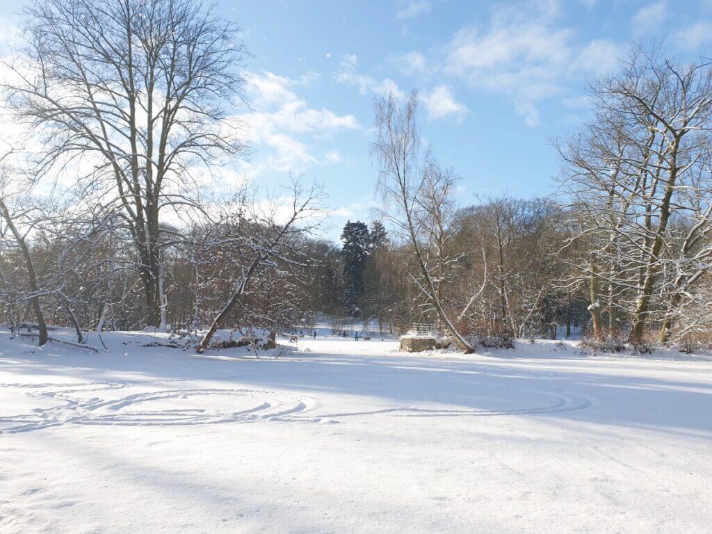 Der zugefrorene See im Park Manhagen – Foto: Nicole Schmidt