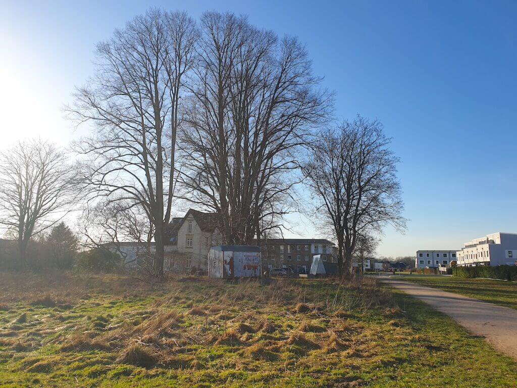 Hundeauslauf Erlenhof in Ahrensburg – Foto: Nicole Schmidt