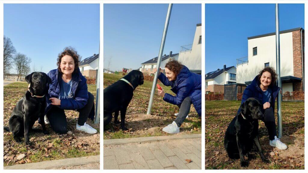 Interview mit Luna am Hundeauslauf Erlenhof in Ahrensburg – Fotos: Judith Weyers