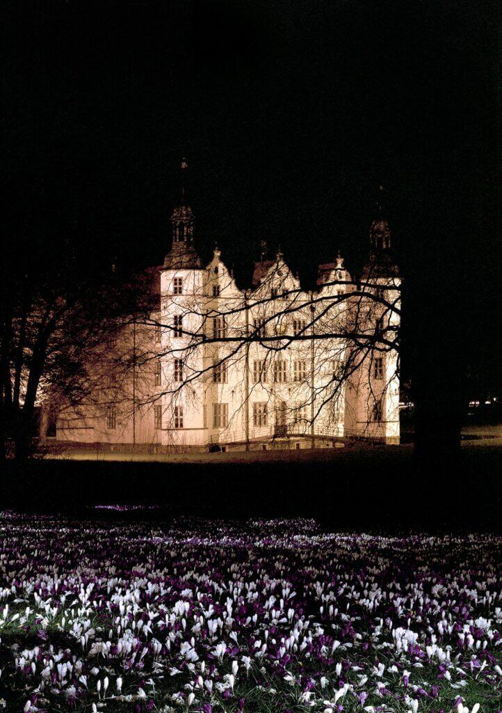 Schloss Ahrensburg, die Krokusse bei Nacht – Foto: Boris Georgiev