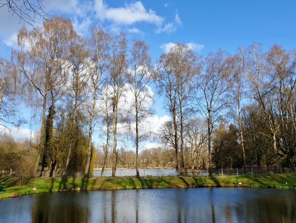 See am Haus der Natur in Ahrensburg – Foto: Nicole Schmidt