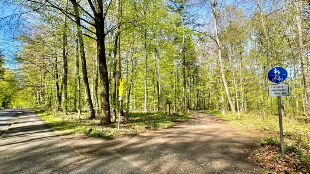 Der Forst Hagen in Ahrensburg – Foto: Nicole Schmidt