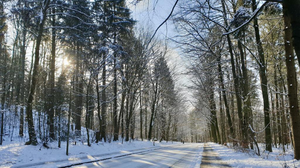 Hagener Allee in Ahrensburg im Schnee –Foto: Nicole Schmidt