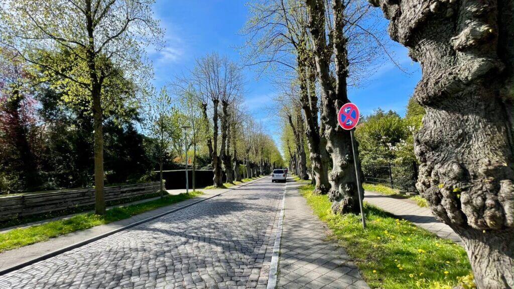 Das Kopfsteinpflaster im Villen-Bereich der Hagener Allee in Ahrensburg –Foto: Nicole Schmidt