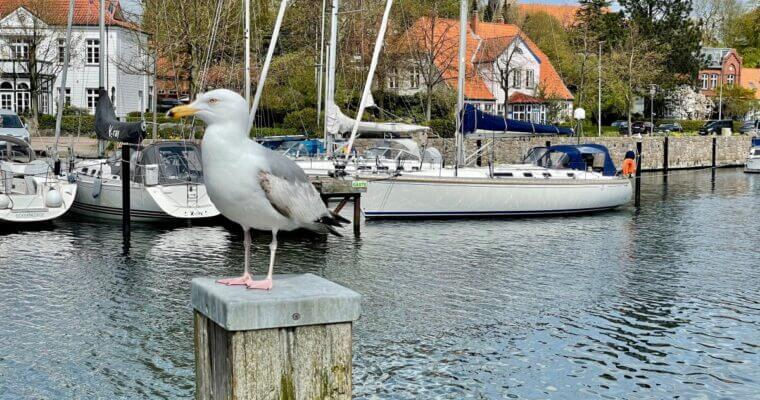 So schön ist Eckernförde! –Ausflugstipp für Schleswig-Holstein