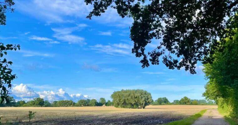 Das Gewerbegebiet Ahrensburg von seiner idyllischen Seite