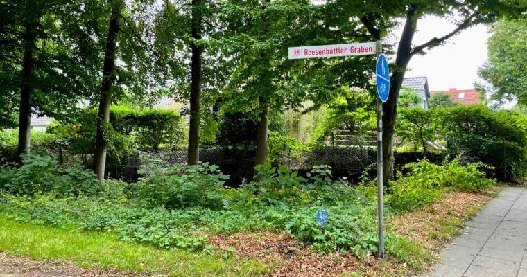 Lieblingswege: Der Reesenbüttler Graben